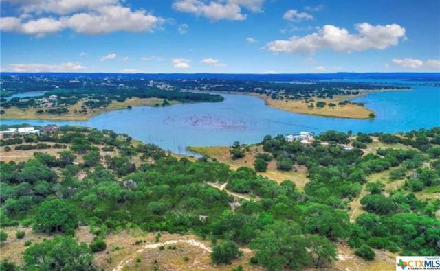 2146 San Jose Way, Canyon Lake, TX 78133 (MLS #384689) :: Vista Real Estate