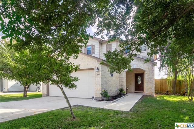 130 Beech Drive, Kyle, TX 78640 (MLS #384814) :: Magnolia Realty
