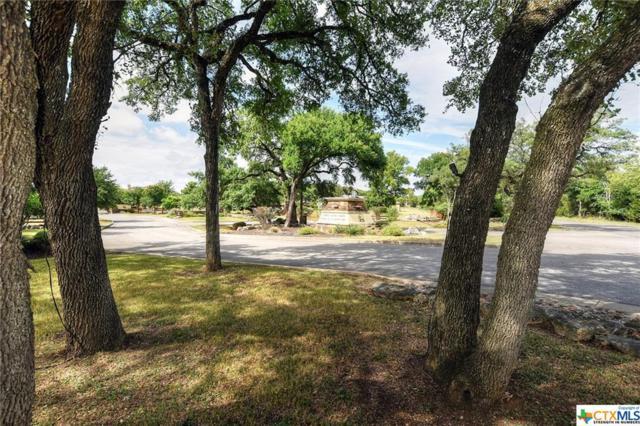 813 Gumnut Grove, New Braunfels, TX 78132 (MLS #384830) :: Vista Real Estate