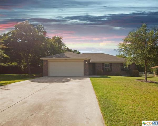 208 Pin Oak Drive, Harker Heights, TX 76548 (MLS #385347) :: The Real Estate Home Team
