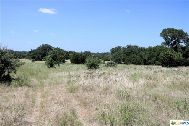 000 Shiny Top Ranch Lane, Salado, TX 76571 (MLS #385424) :: The Real Estate Home Team