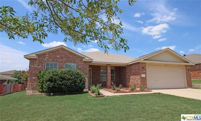 302 Canoe Drive, Harker Heights, TX 76548 (#386159) :: Realty Executives - Town & Country