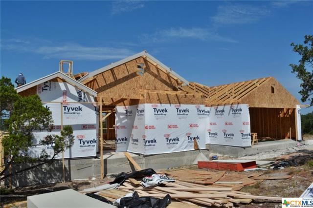 1375 Parton Road, Canyon Lake, TX 78133 (#386608) :: Realty Executives - Town & Country
