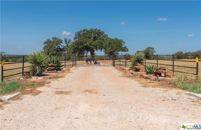21264 State Highway 80, Gonzales, TX 78629 (MLS #386782) :: Brautigan Realty