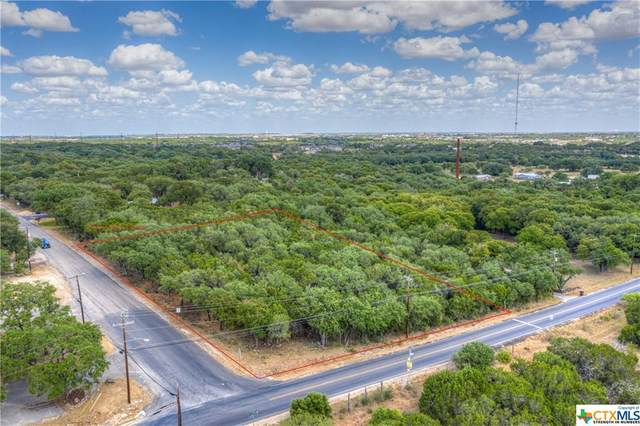 1598 River Road, New Braunfels, TX 78132 (MLS #389481) :: The Myles Group