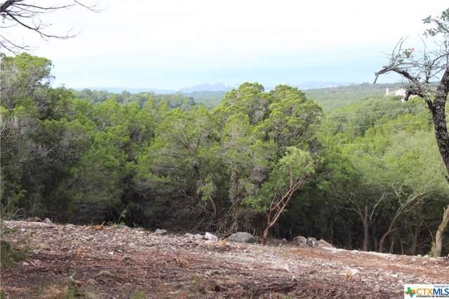 1311 Moerike Road, Canyon Lake, TX 78133 (MLS #389959) :: Vista Real Estate