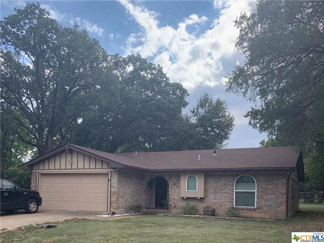 1012 Terra Alta Dr., Belton, TX 76513 (MLS #390169) :: Vista Real Estate