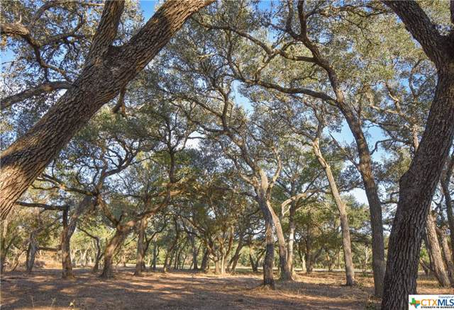 Tract G Old Highway Road, Inez, TX 77968 (MLS #390937) :: The i35 Group