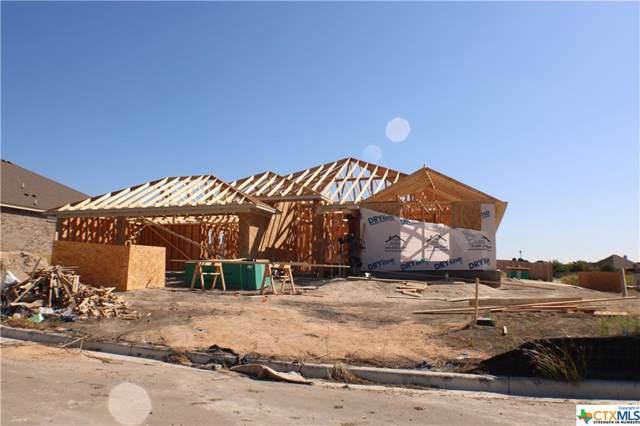 101 Button Bush Court, Nolanville, TX 76559 (MLS #391386) :: Marilyn Joyce | All City Real Estate Ltd.