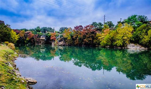 940 Mary Preiss Drive, New Braunfels, TX 78132 (MLS #391752) :: The i35 Group