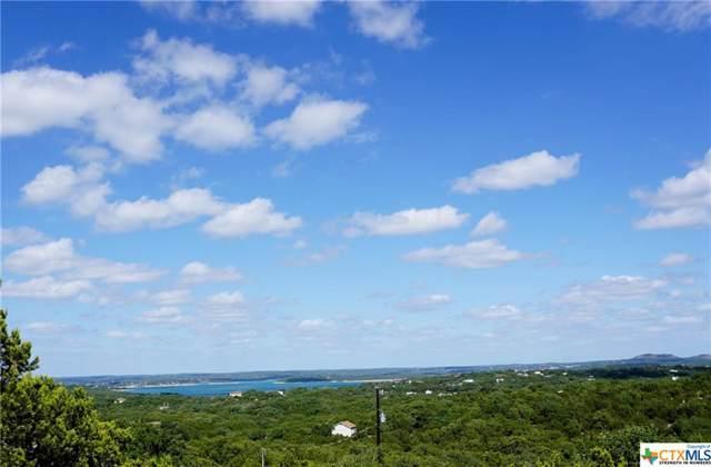 667 Damar Drive, Canyon Lake, TX 78133 (MLS #392305) :: Berkshire Hathaway HomeServices Don Johnson, REALTORS®