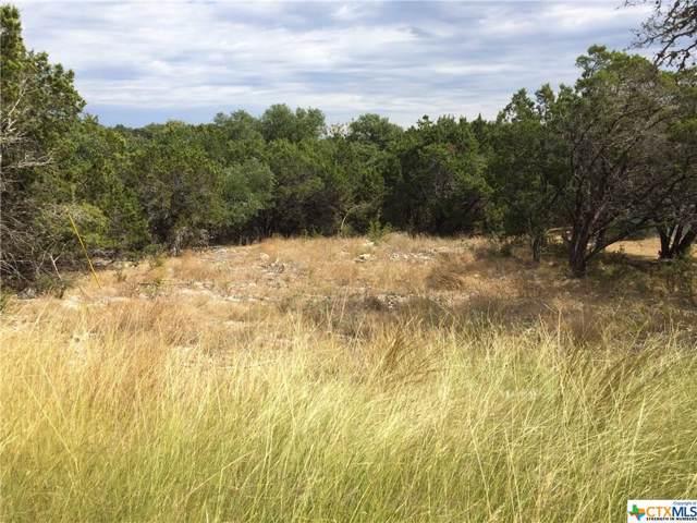 1176 Canyon Lake Drive, Canyon Lake, TX 78133 (MLS #392427) :: Vista Real Estate