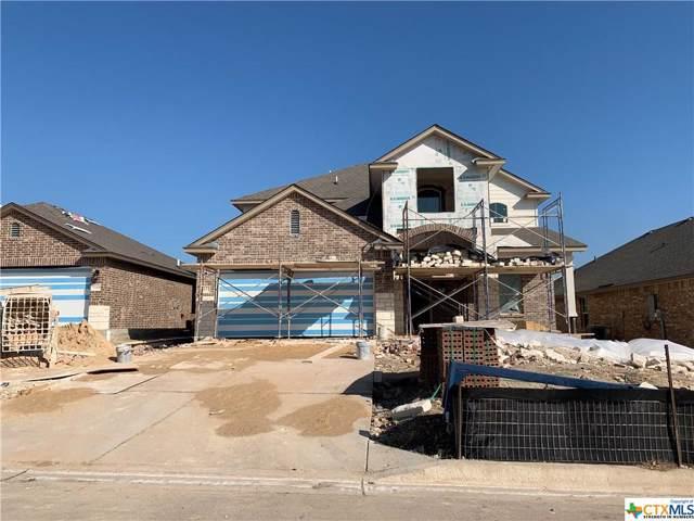 5553 Perdita Drive, Belton, TX 76513 (MLS #392532) :: The Real Estate Home Team