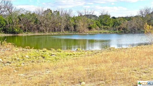 123 Acres Twin Mountain Road, Copperas Cove, TX 76522 (MLS #393539) :: Kopecky Group at RE/MAX Land & Homes