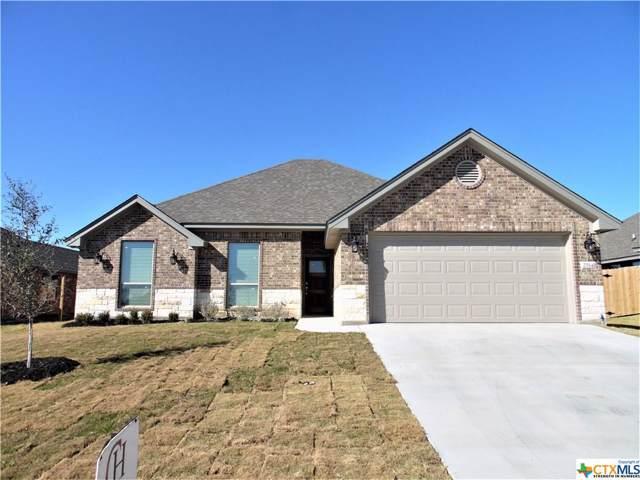 2514 Inca Dove, Temple, TX 76502 (MLS #396966) :: Vista Real Estate