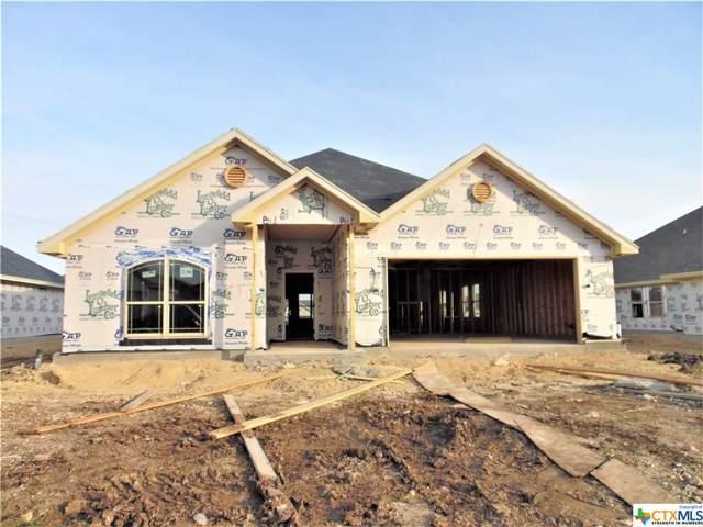 2603 Emerald Dove, Temple, TX 76502 (MLS #399227) :: Vista Real Estate