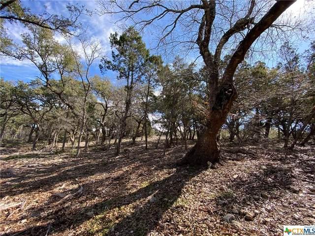 5954 Colin Ridge, New Braunfels, TX 78132 (MLS #399283) :: The Zaplac Group