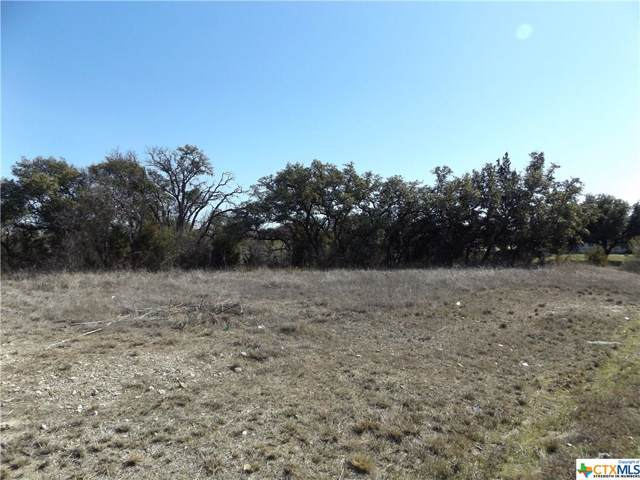 378 Stoneham Lane, Killeen, TX 76542 (MLS #399443) :: The Real Estate Home Team