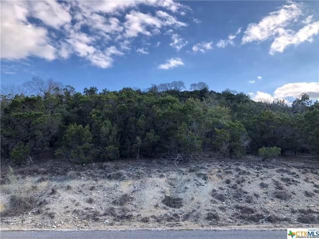1185 Soaring Eagle Drive, Fischer, TX 78623 (MLS #400587) :: Erin Caraway Group