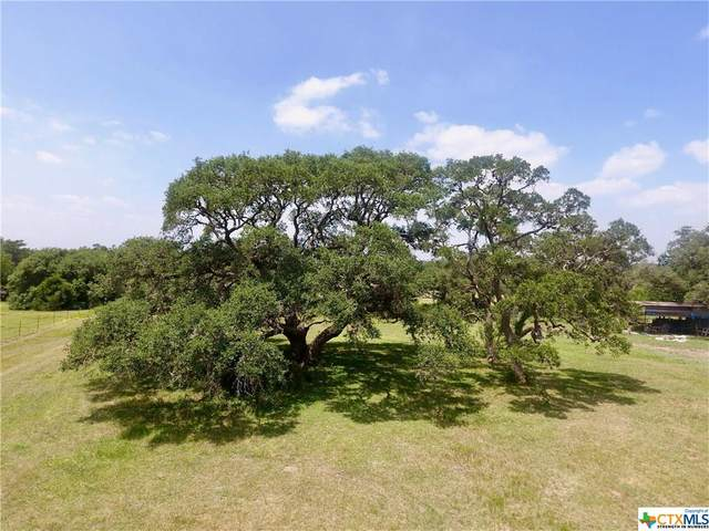 TBD County Road 387, Hallettsville, TX 77964 (MLS #401578) :: The Real Estate Home Team