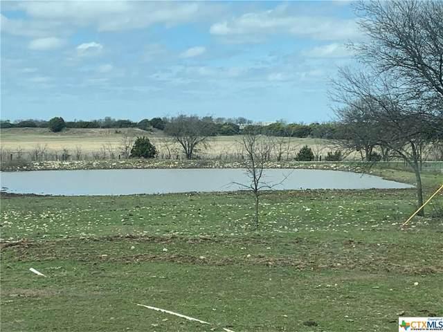 1060 County Road 238, Gatesville, TX 76528 (MLS #402426) :: Berkshire Hathaway HomeServices Don Johnson, REALTORS®