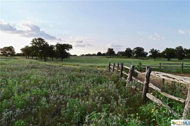 TBD County Road 283, Gonzales, TX 78629 (MLS #407548) :: The Myles Group