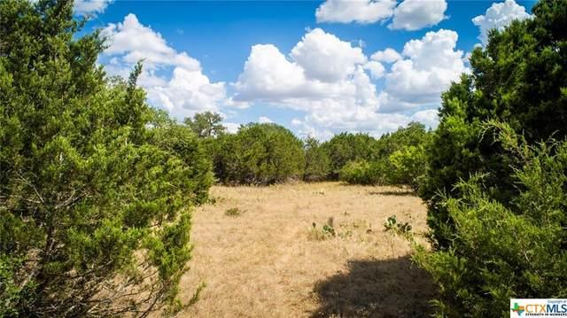 2670 Black Bear Drive, New Braunfels, TX 78132 (MLS #407621) :: The Real Estate Home Team