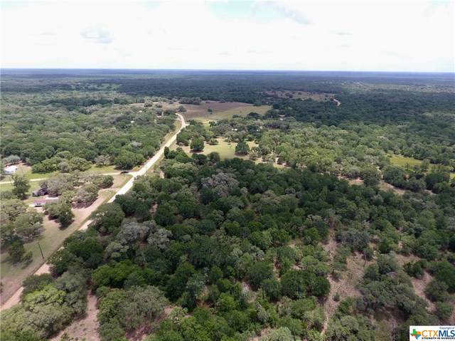 TBD County Road 123F, Hallettsville, TX 77986 (MLS #409964) :: The Zaplac Group