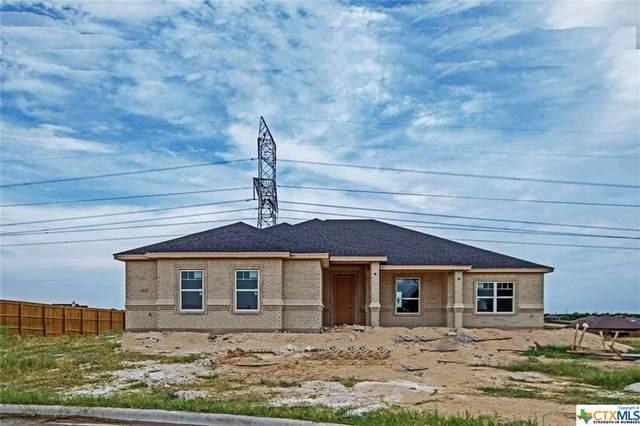 6155 Big Tree Drive, Salado, TX 76571 (MLS #412649) :: The Zaplac Group