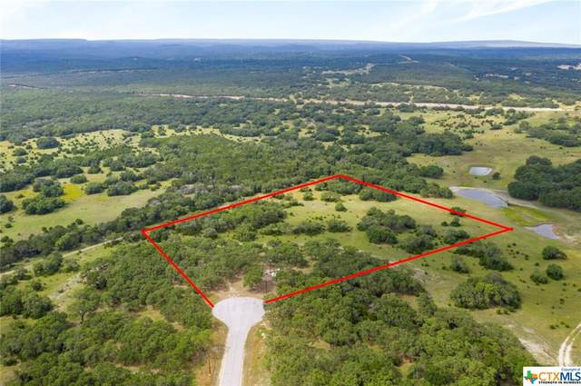 170 Axis Way, Lampasas, TX 76550 (MLS #412899) :: The Real Estate Home Team