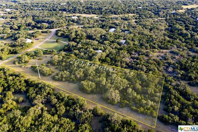 201 Frontier Trail, Wimberley, TX 78676 (MLS #412933) :: The Zaplac Group