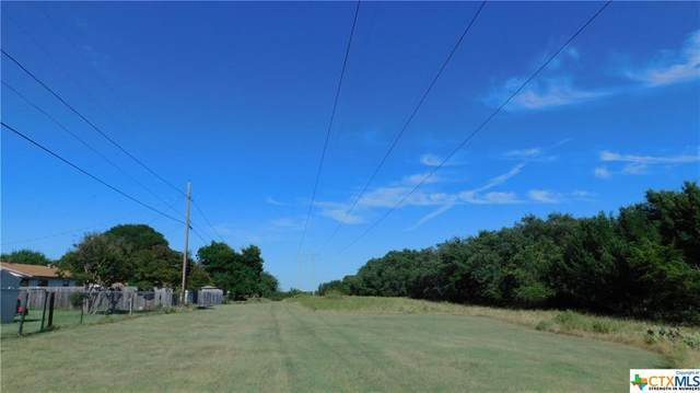 1501 Canyon Drive, Copperas Cove, TX 76522 (MLS #413148) :: The Zaplac Group