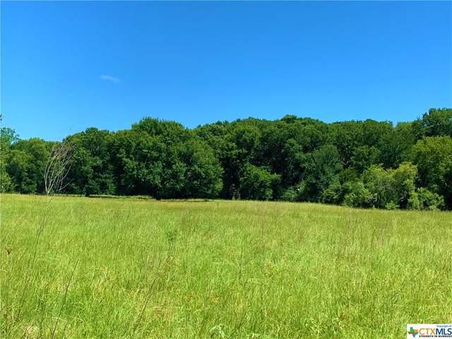TBD Roy Road, Flatonia, TX 78941 (MLS #415330) :: Kopecky Group at RE/MAX Land & Homes