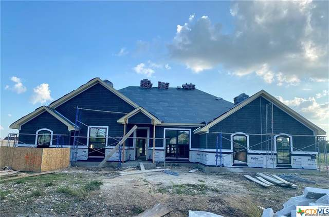 8313 Tesoro Drive, Temple, TX 76504 (MLS #418263) :: The Zaplac Group