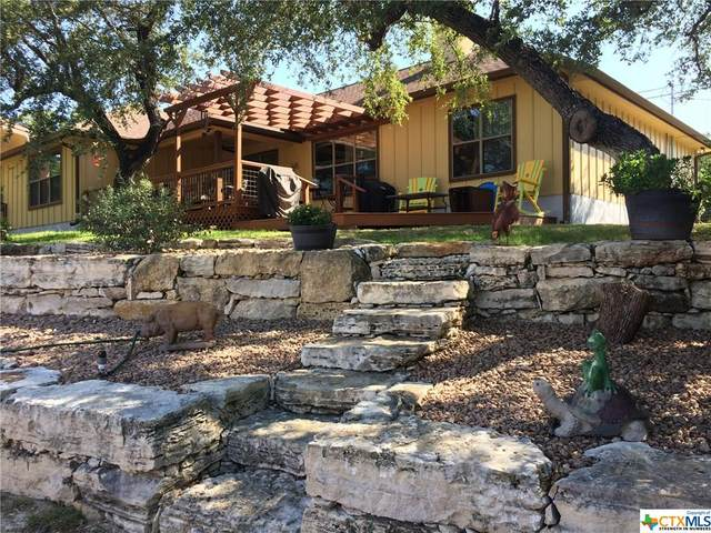209 Marlys Avenue, Canyon Lake, TX 78133 (MLS #418436) :: The Real Estate Home Team