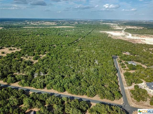 1301 Jennings Branch Road, Georgetown, TX 78633 (MLS #418828) :: The Zaplac Group