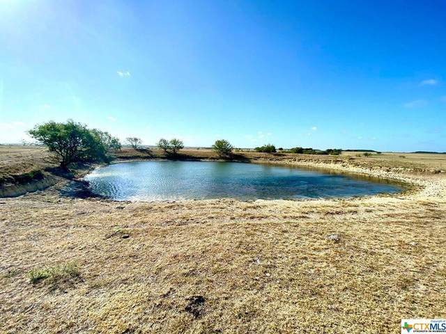 TBD Tract 8 Fm 1783, Gatesville, TX 76528 (MLS #419012) :: The Zaplac Group