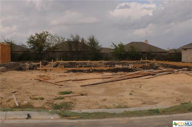 809 Holliday Drive, Killeen, TX 76542 (MLS #419887) :: The Zaplac Group
