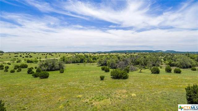 1967 County Road 3270 Lot 4 Rylan Ranch, Kempner, TX 76539 (MLS #420067) :: Brautigan Realty