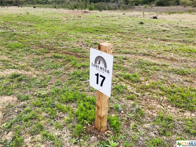 LOT 17 Lone Mesa Ranch, Lampasas, TX 76550 (MLS #420613) :: Kopecky Group at RE/MAX Land & Homes