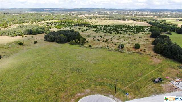03 San Miguel Court, Blanco, TX 78606 (MLS #424644) :: The Zaplac Group