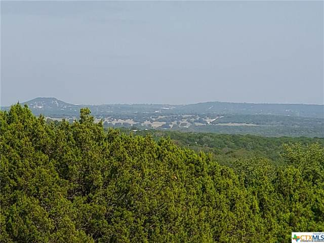 0000 E County Rd 224, Kempner, TX 76539 (MLS #424683) :: Vista Real Estate