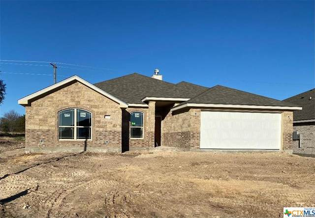 420 Damascus Drive, Belton, TX 76513 (#425930) :: Realty Executives - Town & Country