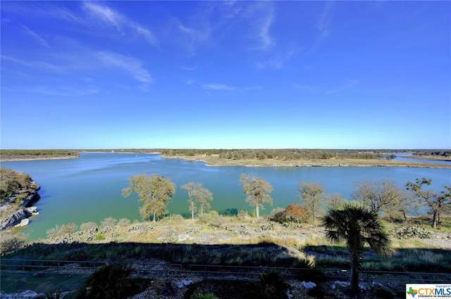 130 Sobrante Road #303, Belton, TX 76513 (MLS #426603) :: Texas Real Estate Advisors