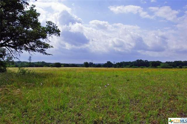 000 County Road 236, Liberty Hill, TX 78642 (MLS #427367) :: RE/MAX Family