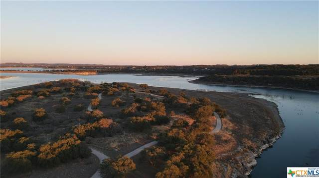 2125 Alto Lago Canyon, Canyon Lake, TX 78133 (#428382) :: First Texas Brokerage Company