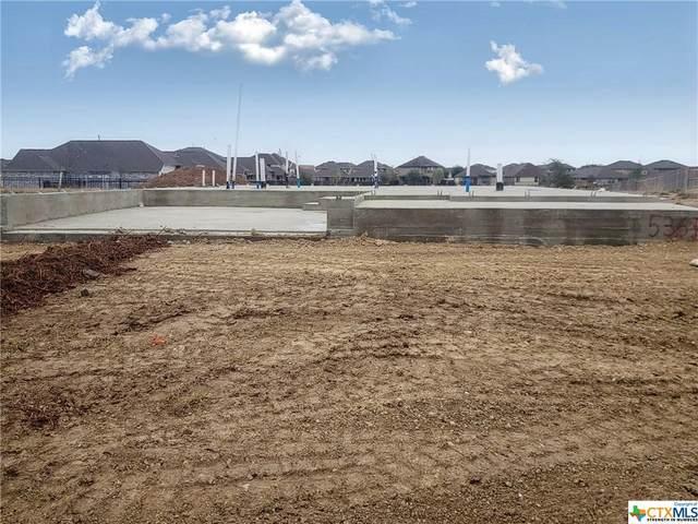 536 Blue Oak Boulevard, San Marcos, TX 78666 (MLS #429515) :: Vista Real Estate