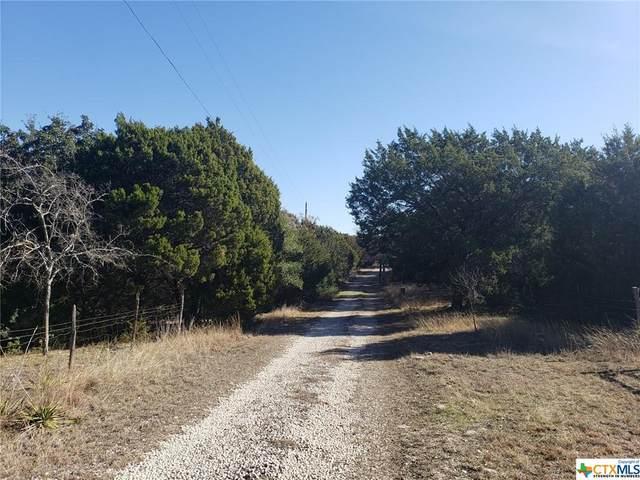 8565 S Us Highway 183, Briggs, TX 78608 (MLS #431074) :: The Myles Group