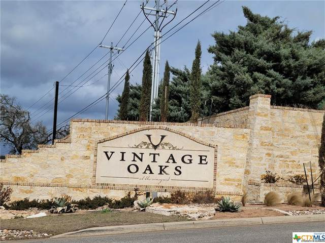 1253 Magnum, New Braunfels, TX 78132 (MLS #432719) :: Texas Real Estate Advisors