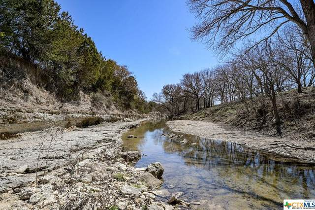 Tract 2 Mansell Road, Gatesville, TX 76528 (MLS #433183) :: The Myles Group